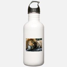 Funny Lioness Water Bottle
