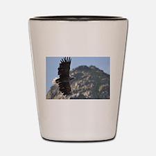 Sea Eagle Shot Glass