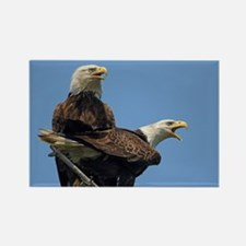 Eagle Parents Magnets