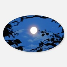 Once in a Blue Moon  - Decal