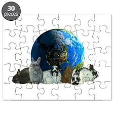 Polish World Puzzle