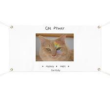 Rainbow Light Cat Power Banner