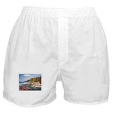 Gorgeous Coast of Oregon Stamp Boxer Shorts