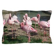 Flamingos Birds pink Pillow Case