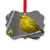 Warblers Picture Frame Ornaments