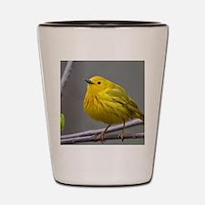 Yellow Warbler Shot Glass