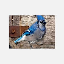 rustic barn wood blue jay 5'x7'Area Rug