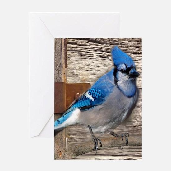 rustic barn wood blue jay Greeting Cards