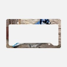 rustic barn wood blue jay License Plate Holder