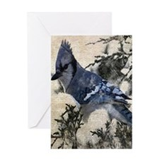christmas snow blue jay Greeting Cards