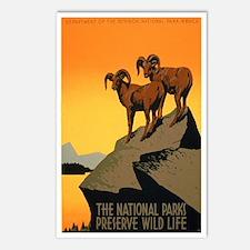 1930s Vintage Preserve Wildlife WPA Poster Postcar