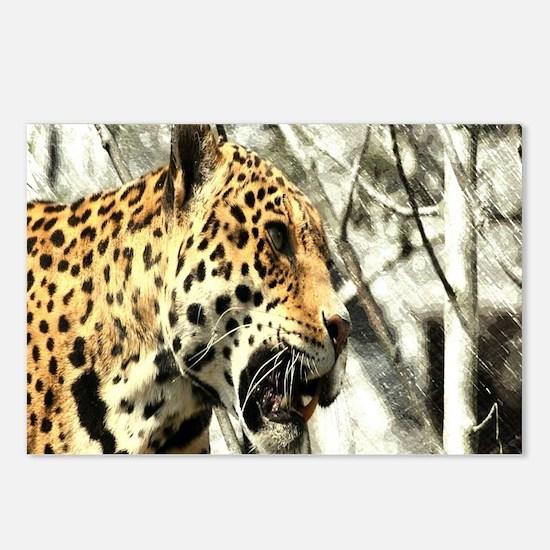 nature wild safari leopar Postcards (Package of 8)
