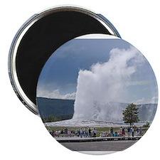 Unique Geyser Magnet