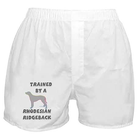 Ridgeback Slvr Boxer Shorts