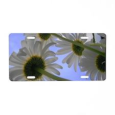 Down Under Daisy Days Aluminum License Plate