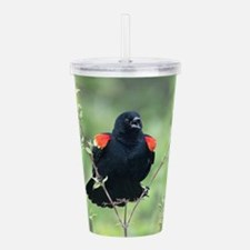 Red-Winged Blackbird Acrylic Double-wall Tumbler