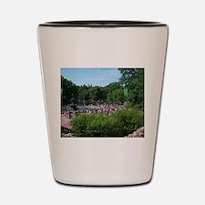 Central Park Shot Glass