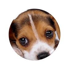 "Cute Puppy 3.5"" Button (100 pack)"