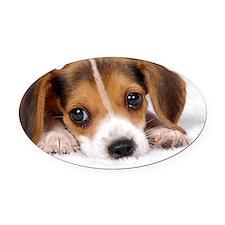 Cute Puppy Oval Car Magnet