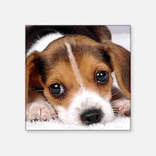 Cute Puppy Sticker