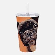 Bulldog Puppy Acrylic Double-wall Tumbler