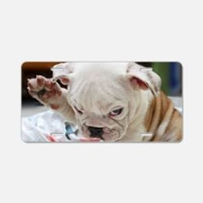 Funny English Bulldog Puppy Aluminum License Plate