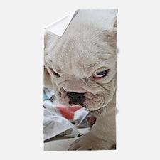 Funny English Bulldog Puppy Beach Towel