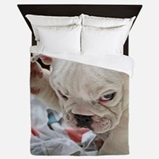 Funny English Bulldog Puppy Queen Duvet