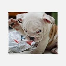 Funny English Bulldog Puppy Throw Blanket