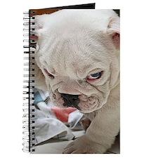 Funny English Bulldog Puppy Journal