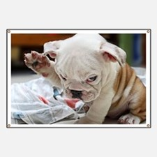 Funny English Bulldog Puppy Banner