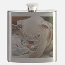 Funny English Bulldog Puppy Flask