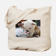Funny English Bulldog Puppy Tote Bag