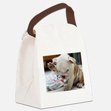 Funny English Bulldog Puppy Canvas Lunch Bag