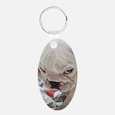 Funny English Bulldog Puppy Keychains