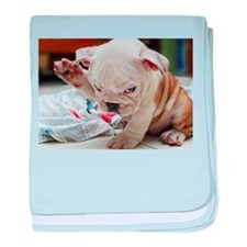 Funny English Bulldog Puppy baby blanket