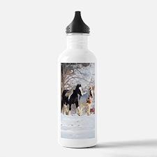 Snow ponies Water Bottle