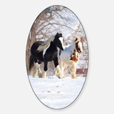 Snow ponies Decal