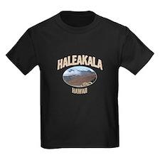 Haleakala National Park T