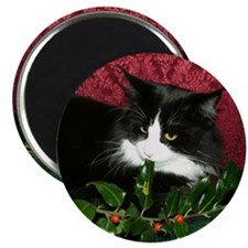 B&W Maine Coon Cat & Holly Magnet