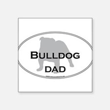 "Cute American english bulldog Square Sticker 3"" x 3"""