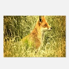 nature wildlife red fox Postcards (Package of 8)