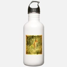 nature wildlife red fo Water Bottle