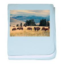 National Parks Bison Herd baby blanket