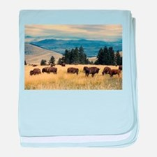 National Parks Bison Herd baby blanket