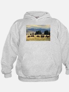 National Parks Bison Herd Hoodie