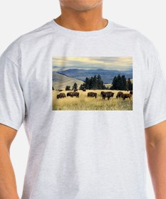 National Parks Bison Herd T-Shirt
