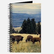 National Parks Bison Herd Journal
