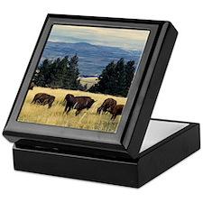 National Parks Bison Herd Keepsake Box
