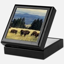 National Parks Bison Herd Keepsake Box